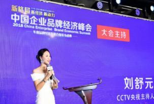 中国企业品牌经济峰会 ,创客匠人获评年度互联网企业服务十大创新品牌